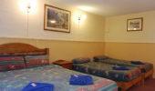 Fernery Room